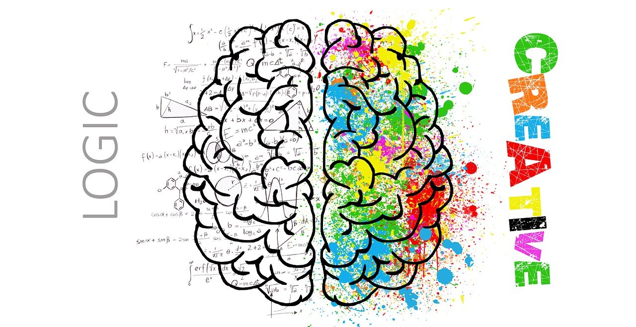 beide Seiten vom Gehirn als Grafik